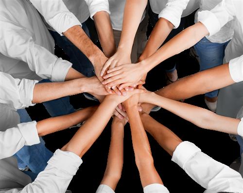 Návrh na ZM: Dotační program pro podnikatele a neziskové organizace